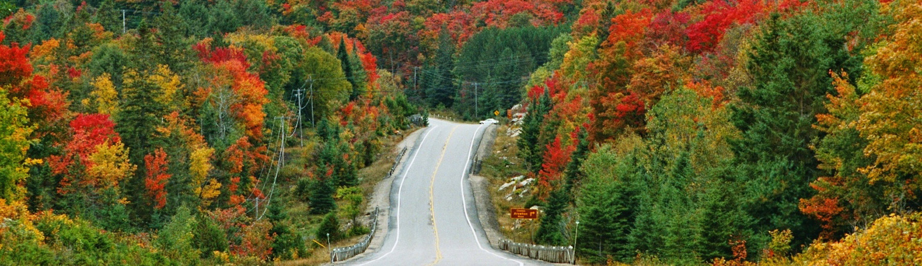 Fall colours in Eastern Canada