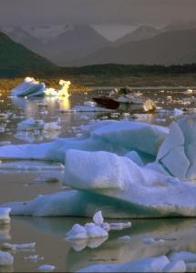 Ice bestiary, Alsek Lake