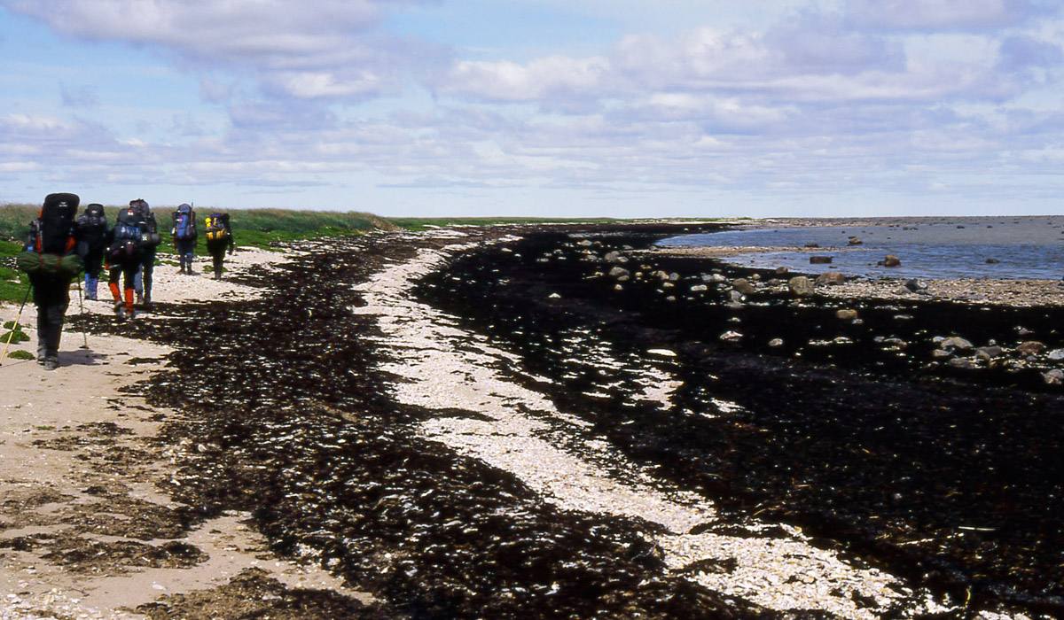Hudson Bay Trekking