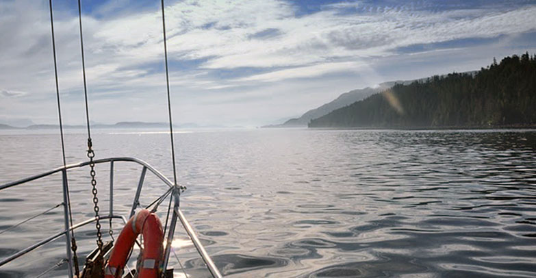 Whale watching sailing excursion in Johnstone Strait