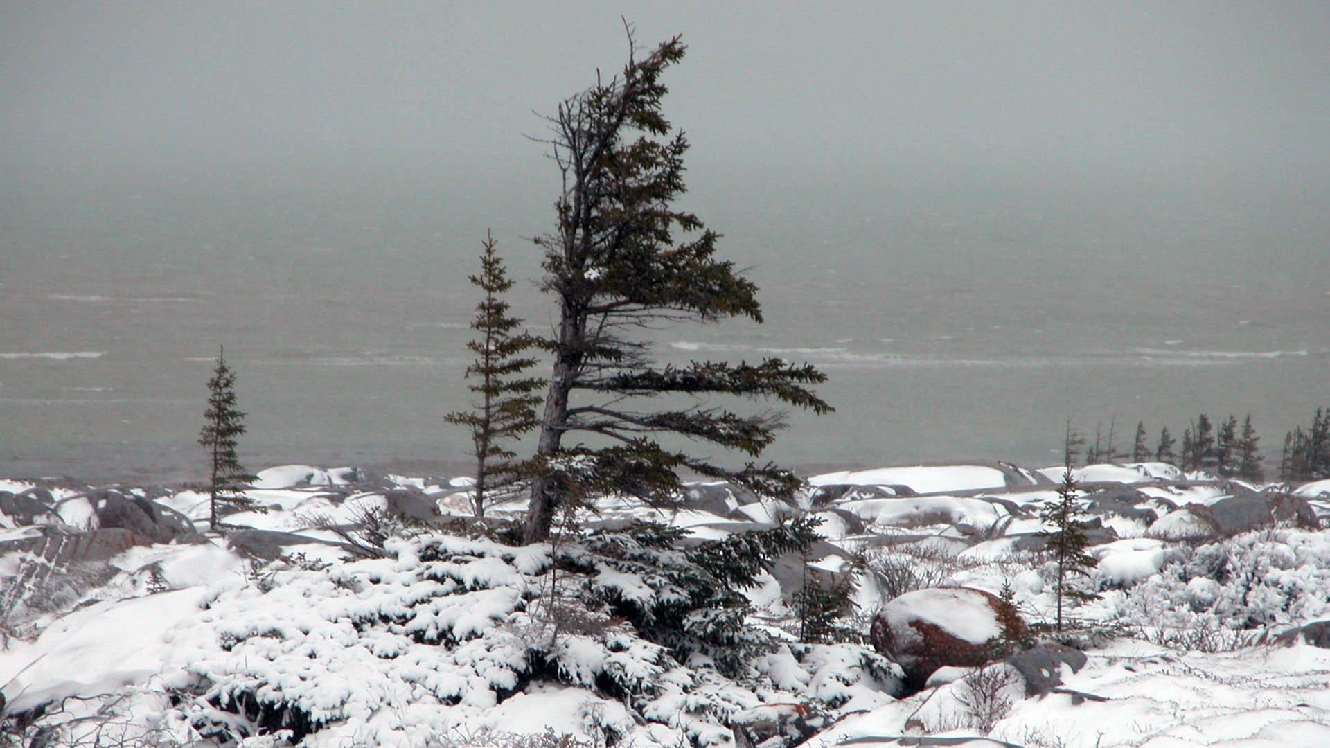 Hudson Bay, Manitoba