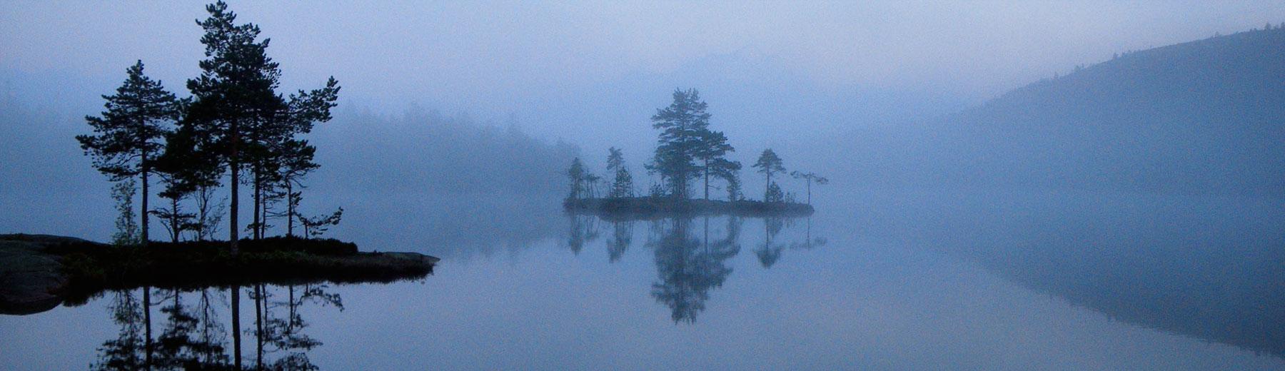 Foggy lake in Algonquin Park, Ontario