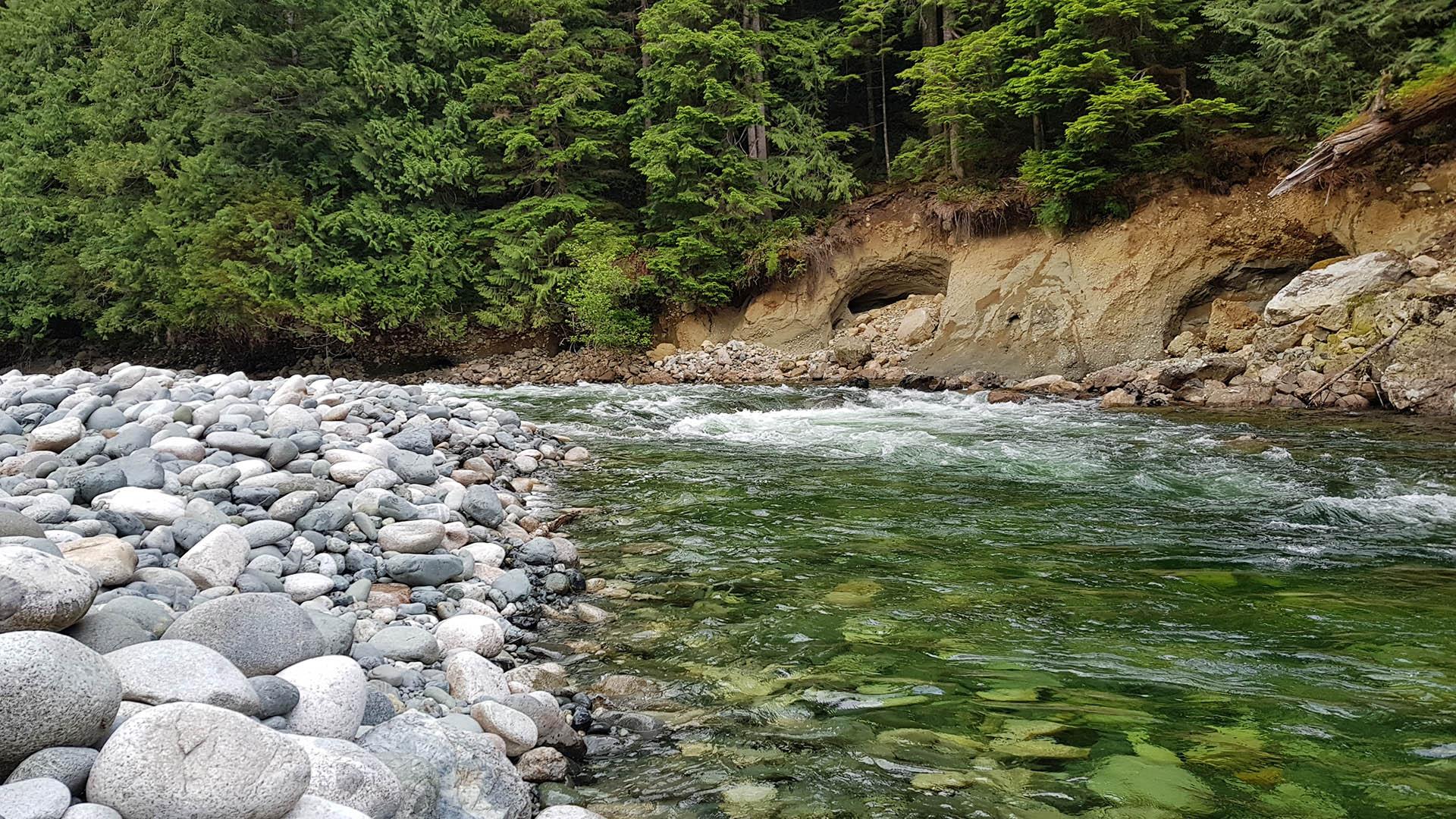 Gold River, BC - Rob Zonder