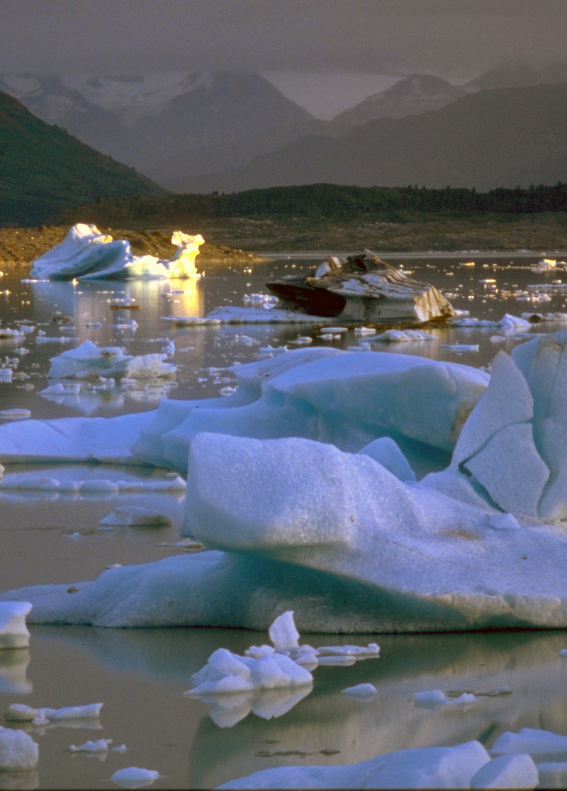 Ice bestiary, Alsek Lake