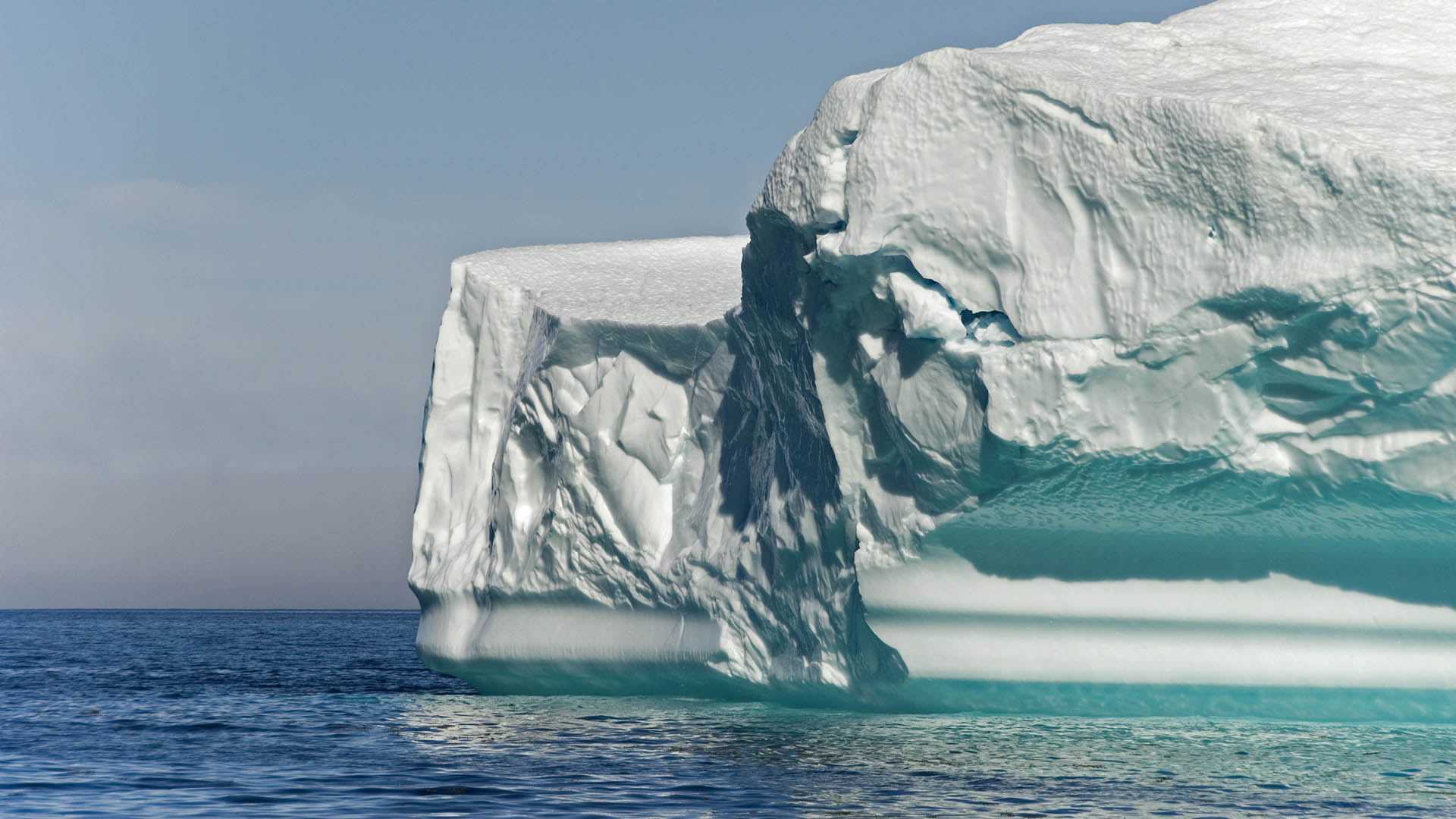 Iceberg encounter in Labrador with Nature Trek Canada - Dirk Rijkers