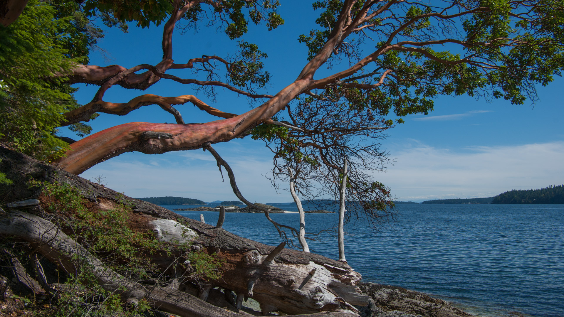 Tsawout First Nation Reserve, Salt Spring Island - Didier Delahaye