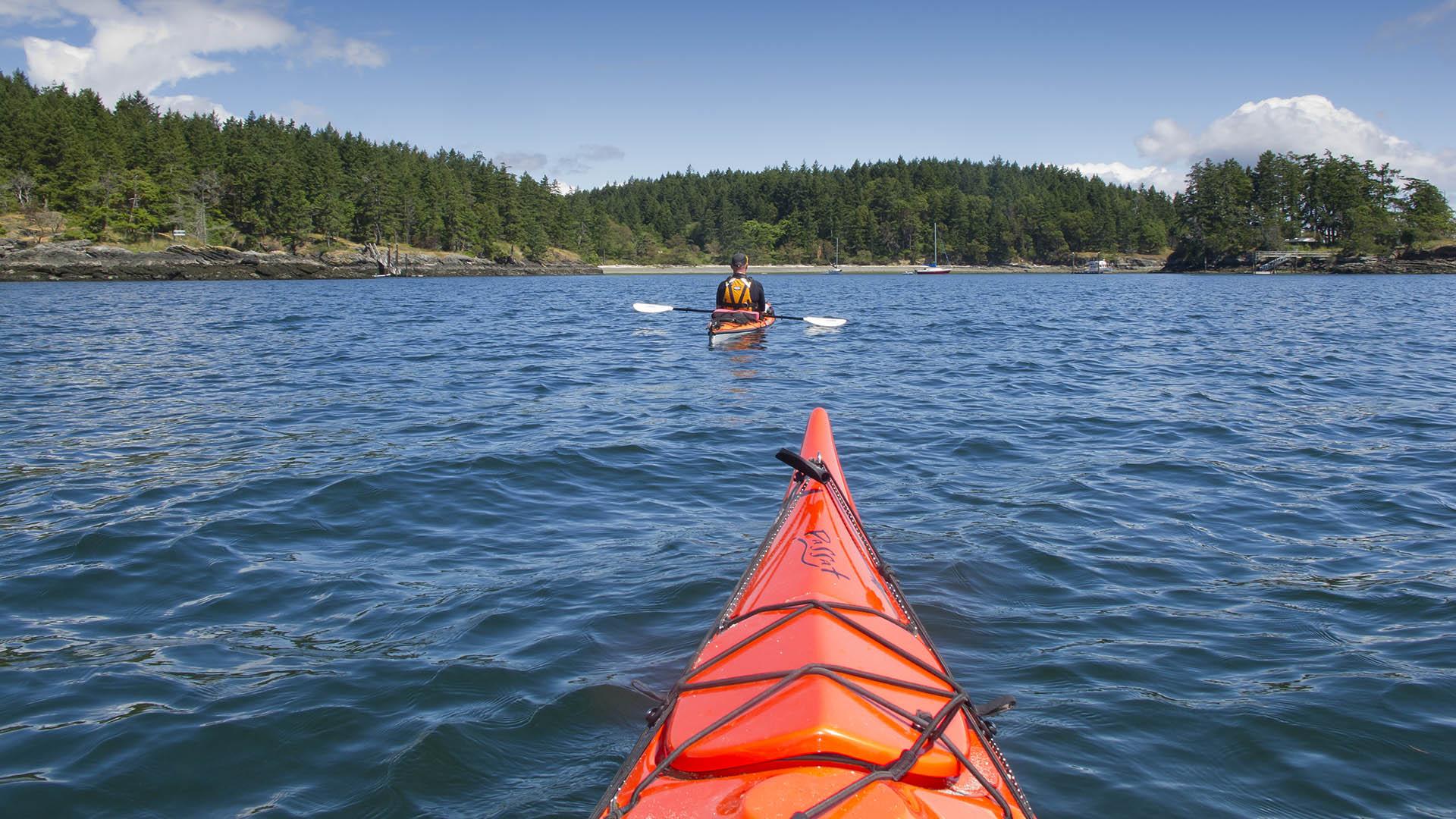 Salt Spring Island kayaking with Nature Trek Canada - M Roosenboom