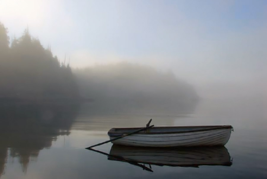 Morning Fog, in Clayoquot