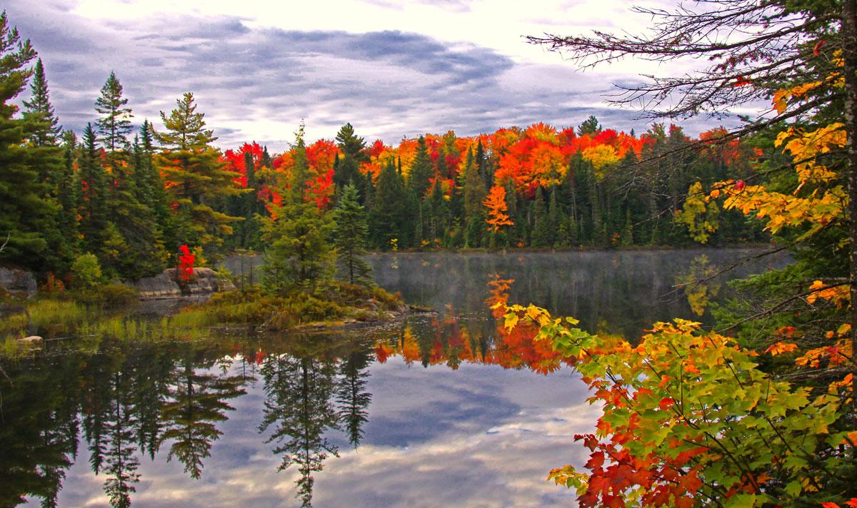 Canada Bear Nature Park
