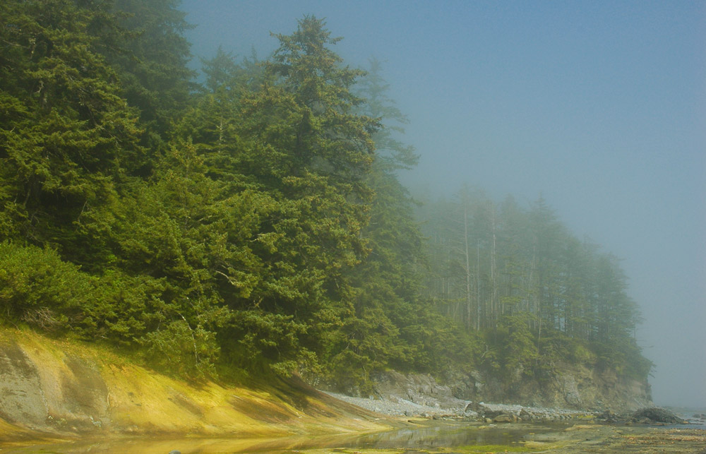 Nootka Island morning